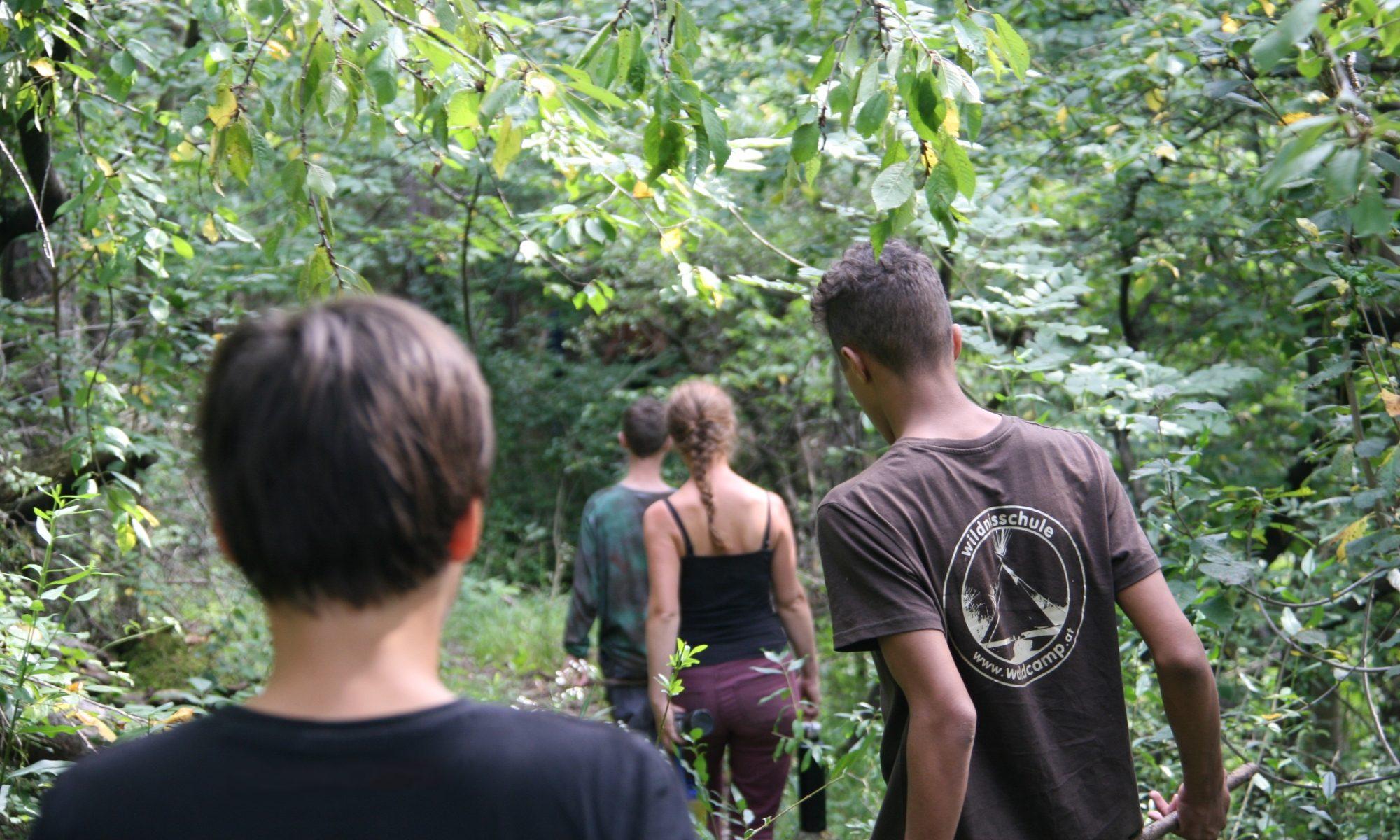 Wildnisschule Waldcamp